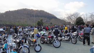 Sakura20121